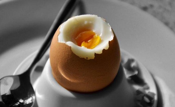 6f61c11c1c3e Ένα αυγό τη μέρα αυξάνει σημαντικά την ανάπτυξη των μικρών παιδιών ...