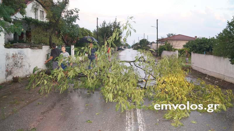 DSC00383 - Εικόνες καταστροφής από την θεομηνία στα Τρίκαλα (φώτο)