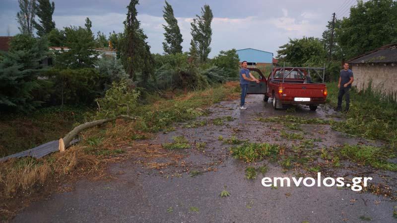 DSC00384 - Εικόνες καταστροφής από την θεομηνία στα Τρίκαλα (φώτο)