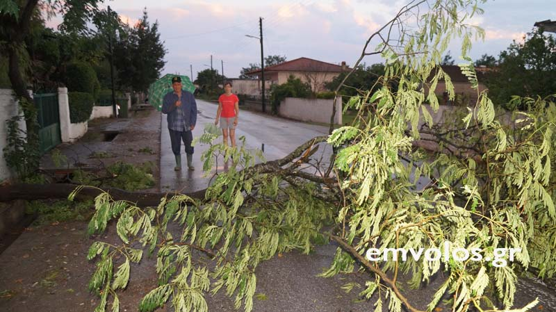DSC00385 - Εικόνες καταστροφής από την θεομηνία στα Τρίκαλα (φώτο)