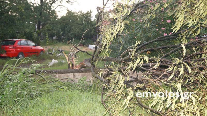 DSC00386 - Εικόνες καταστροφής από την θεομηνία στα Τρίκαλα (φώτο)