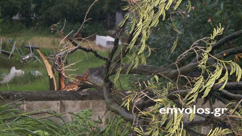 DSC00387 - Εικόνες καταστροφής από την θεομηνία στα Τρίκαλα (φώτο)
