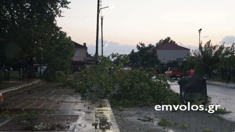 DSC00409 - Εικόνες καταστροφής από την θεομηνία στα Τρίκαλα (φώτο)