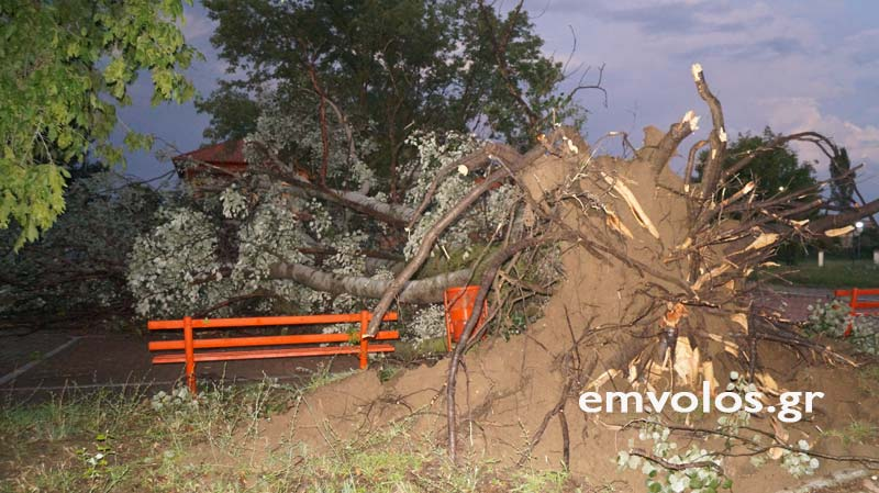 DSC00414 - Εικόνες καταστροφής από την θεομηνία στα Τρίκαλα (φώτο)