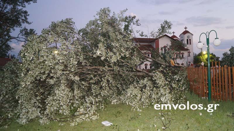 DSC00416 - Εικόνες καταστροφής από την θεομηνία στα Τρίκαλα (φώτο)
