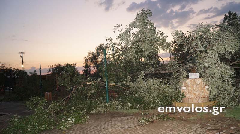 DSC00417 - Εικόνες καταστροφής από την θεομηνία στα Τρίκαλα (φώτο)