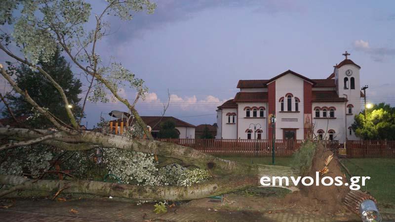 DSC00420 - Εικόνες καταστροφής από την θεομηνία στα Τρίκαλα (φώτο)