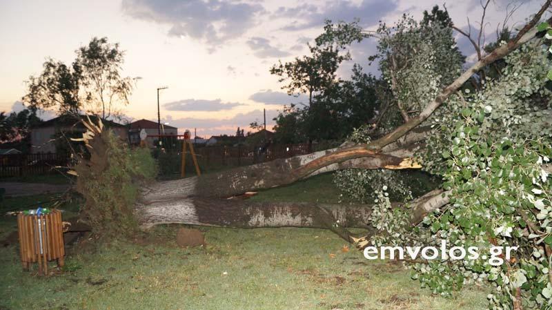 DSC00421 - Εικόνες καταστροφής από την θεομηνία στα Τρίκαλα (φώτο)