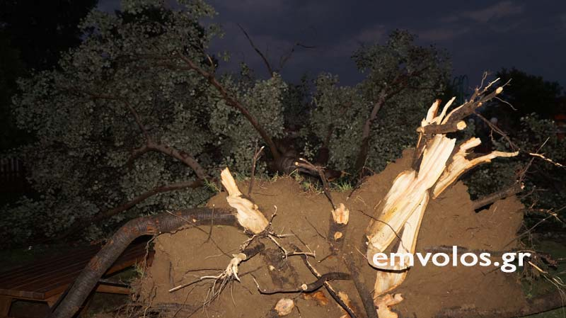 DSC00423 - Εικόνες καταστροφής από την θεομηνία στα Τρίκαλα (φώτο)