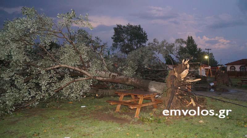 DSC00425 - Εικόνες καταστροφής από την θεομηνία στα Τρίκαλα (φώτο)