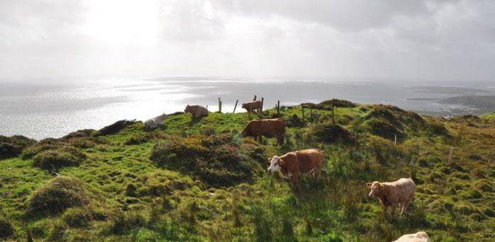 Η Ιρλανδία